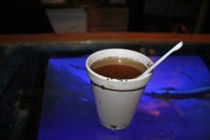 Mitragyna speciosa (Kratom) Tea