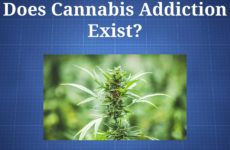 cannabis addiction