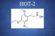 HOT-2