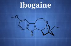 Ibogaine and Iboga