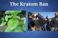 The Kratom Ban: Shedding Light on Misinformation