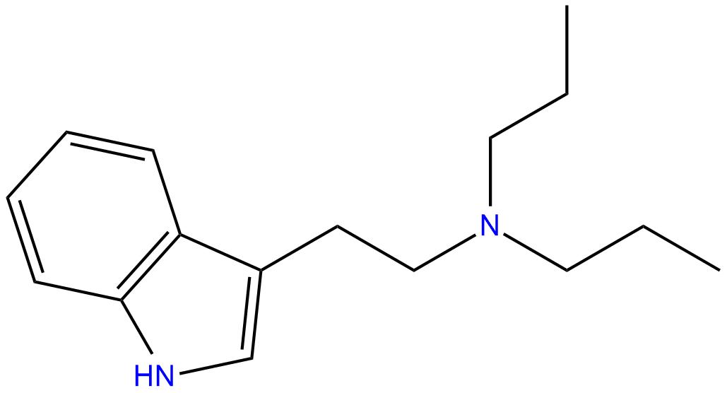 DPT Structure