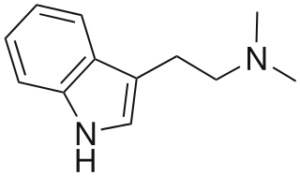 Dimethyltryptamine (DMT) Structure
