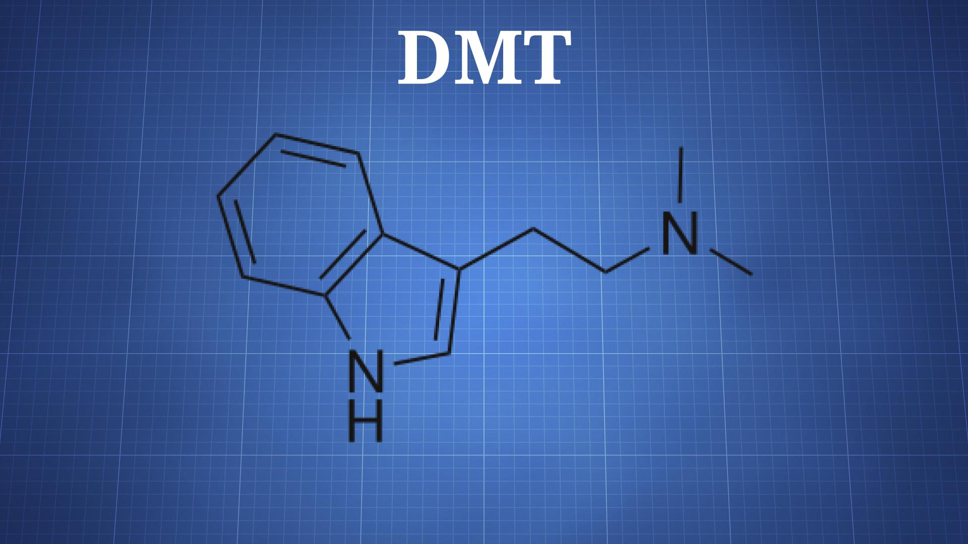 characteristics and effects of dmt n n dimethyltryptamine a psychedelic drug N,n-dimethyltryptamine (dmt)  a large part of dmt psychedelic effects can be attributed to a specific  a psychedelic drug structurally similar to n,n-dmt,.