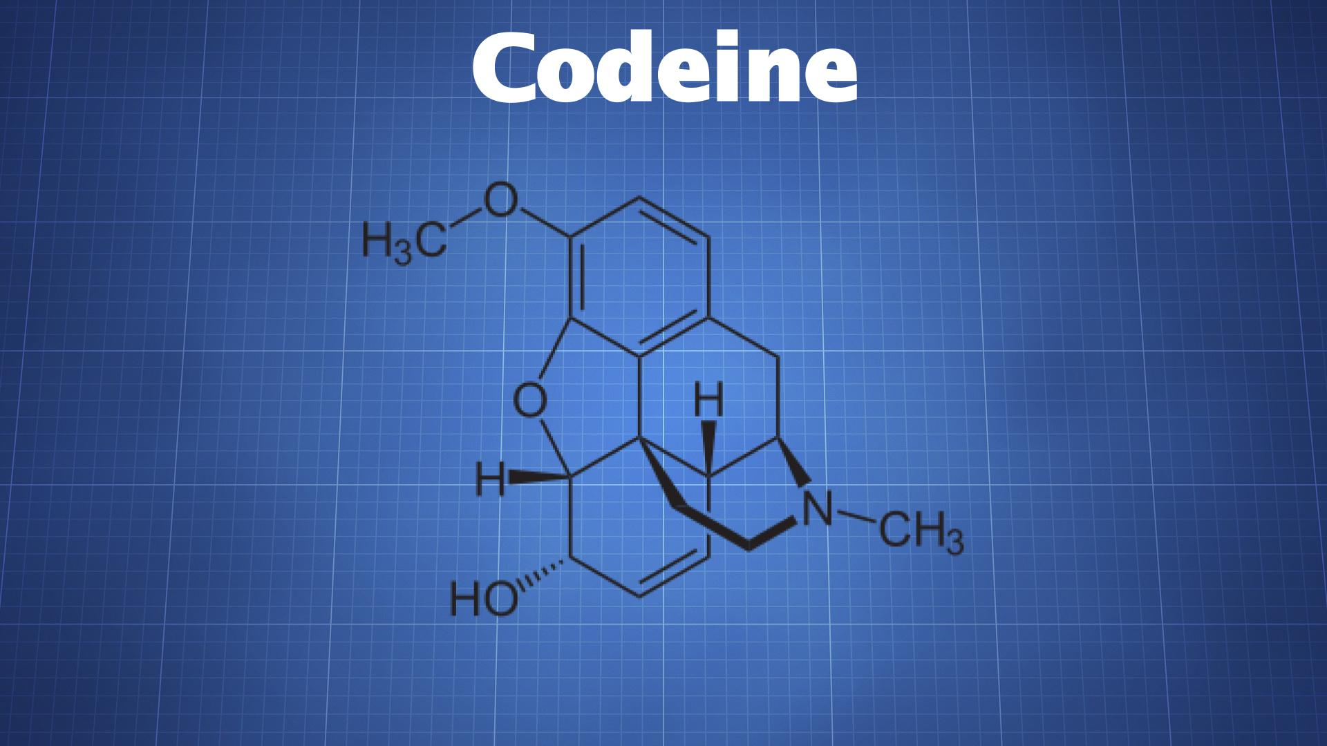 Codeine The Drug Classroom