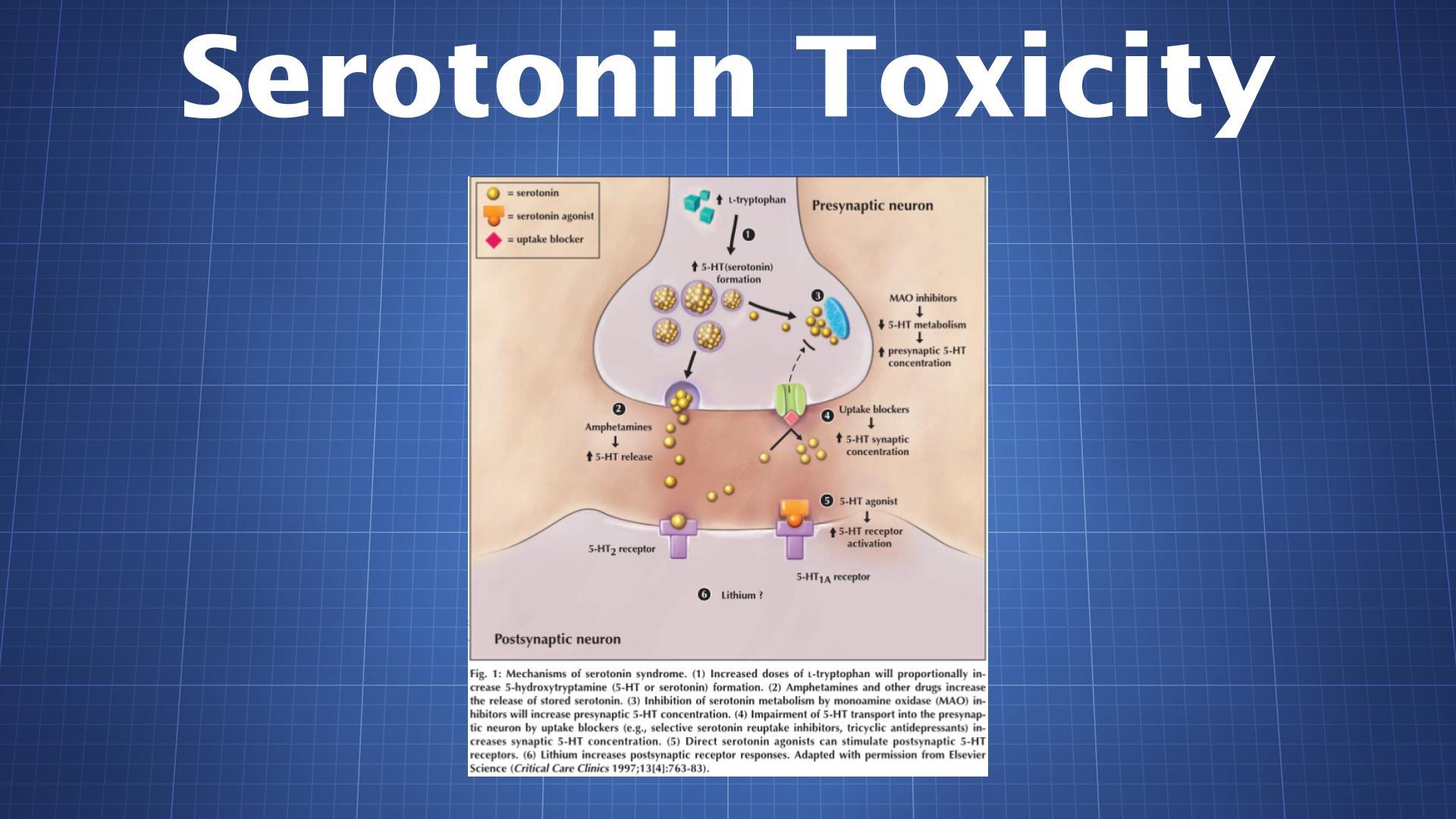 Serotonin Toxicity (Serotonin Syndrome) - The Drug Classroom